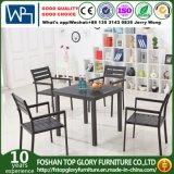 すべてのアルミニウム管の屋外の家具の庭のダイニングテーブルはセットする(TG-6202)