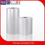 Fabricante BOPP Película de Laminación Térmica con Calidad