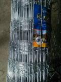 Sailin a galvanisé le treillis métallique de frontière de sécurité d'inducteur