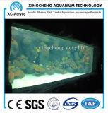 Grand prix marin de stationnement de mer d'aquarium