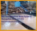 Estrazione mineraria dello stagno del diamante dell'oro che agita Tabella