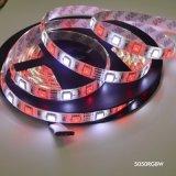 SMD 5050 60LEDs/M RGBW impermeabilizzano/l'illuminazione non impermeabile della decorazione di natale