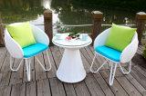 Tabella e presidenza esterne per la mobilia del giardino impostata (HCQ5)