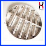 /Removing-Eisenmaterial des magnetischen Filters