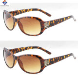 Óculos de sol New Designer Fashion Plastic Eyewear
