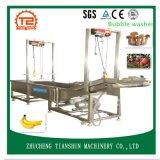 De Apparatuur van de Fruitverwerking voor en Fruit wordt gebruikt die schoonmaken wassen die