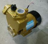 Elektrische selbstansaugende Pumpe des Wasser-PS-126