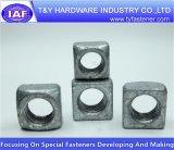 Noix carrée galvanisée blanche du prix usine DIN557