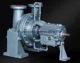 Y 시리즈 최신 액체 원형 펌프