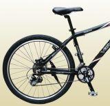 Vélo de montagne (plus récent)
