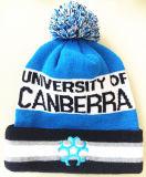 美しい刺繍されたたくわえの暖かい編む帽子(S-1078)