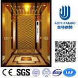 Aote Vvvf profissional conduz para casa o elevador da casa de campo (RLS-211)
