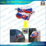 Chaussettes de miroir de voiture, voiture cache miroir de l'aile (NF13F14002)