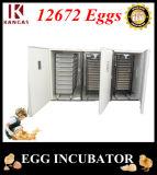 La meilleure volaille des prix Egg des incubateurs avec le prix le plus inférieur (KP-29)