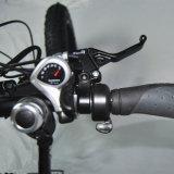 [إن15194] أوروبا يطوي سمين إطار [إ] درّاجة ([رسب-507])