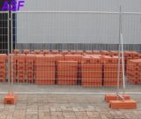Geschweißter Draht-Filetarbeits-Draht-Zaun