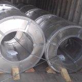 Bobine en acier galvanisée dure d'ASTM 653 complètement dans l'usine de Guanxian