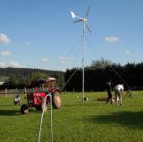 Home Power를 위한 조용한 Wind Generator 500W