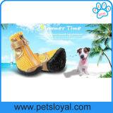 Sapatas médias do cão de animal de estimação da forma fresca do verão do fabricante grandes