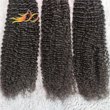 安いインドのバージンの人間の毛髪のねじれたカールの人間の毛髪Dyeable