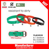TPU Dog Collar, Dog Harness et Leash Set (YL83534)