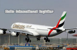 Excellent International Air cargo en provenance de Chine à Ruh/Xwm/l'Arabie saoudite