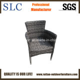 خارجيّة [رتّن] كرسي تثبيت ([سك-ب8863])