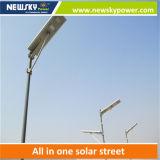 1つの統合された太陽街灯の新しいカスタマイズされた30Wすべて