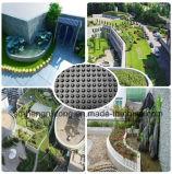 Panneau de drainage en plastique pour la construction supérieure de la maison verte