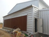 Huhn House /Chicken Shed für Layer und Broiler mit Full Equipment (ZH-10)