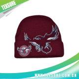 Новые модные акриловые связанные шлем зимы теплые реверзибельные/крышка (073)