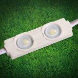 2 LEIDENE van LEDs SMD 5730 Module voor Signage het Licht van de Reclame