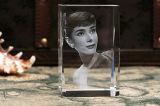 Миниые 3D гравировальные станки лазера кристалла DIY для стеклянного декора для сбывания