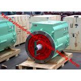Motor assíncrono trifásico à prova de explosões para o transporte da mina de carvão