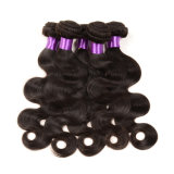 Wholsale를 위한 2016 새로운 Top Sale 8A 브라질 Body Wave Cheap Human Hair Extension