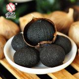 Único alho orgânico chinês 600g do preto do bulbo