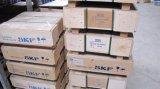 Fornecedor de rolamentos cilíndricos de rolamento cilíndrico SL (SL045040PP)