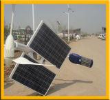 Lumière hybride solaire de vent avec du CE et le RoHS