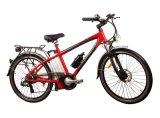 , 베스트셀러 빨간, 250w-500w 의 전기 산악 자전거 (HQLCYCLE1004)