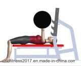 [هيغقوليتي] [شبّريس] أولمبيّ مقادة وزن تخزين, لياقة تجهيز