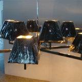 Lamp van de Tegenhanger van het Ijzer van de Schaduw van de Prijs van de fabriek de Zwarte voor Hotel