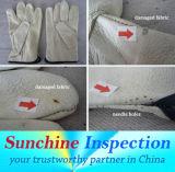 Qualitätsinspektion-Service/Produkt-Inspektion/Laborversuch/Inspektion-Report