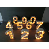 Letter를 가진 LED Light Holiday Decorations