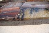 자연적인 화석 목제 석판 급료 Polished 석판