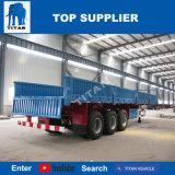 Titaan 3 Container van de Aanhangwagen van de Zijgevel van Assen de Semi 40FT