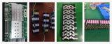 batteria di litio della batteria ricaricabile della batteria dello Li-ione della Banca di potenza della batteria dello ione di litio della batteria dei pesci d'argento della batteria 24V per Bicy elettrico con stile dei bianchetti II