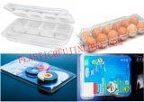 Las verduras de plástico cajas/máquina de fabricación de contenedores