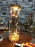 De Decoratie van Kerstmis van het glas van Chinese Fabriek