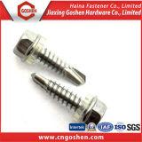 Verbindungselement-Schraube /Self, das Schraube/Maschinen-Schraube klopft