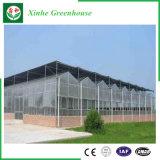 Systeem van de Hydrocultuur van het Huis van het polycarbonaat het Groene voor Groenten/Bloemen/Fruit